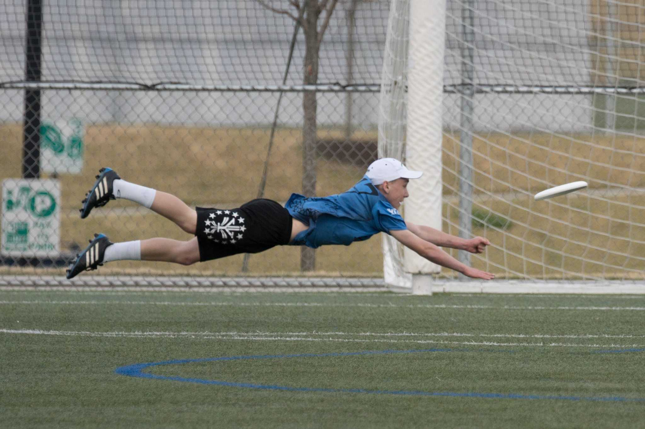An ultimate frisbee player lays out to make a play
