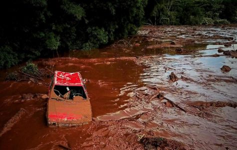 The collapse of the Brumadinho Dam has killed 186 people so far.