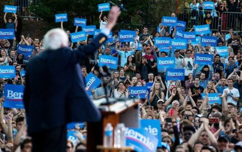 Senator Bernie Sanders, a democratic socialist, at a campaign rally at the University of North Carolina at Chapel Hill.